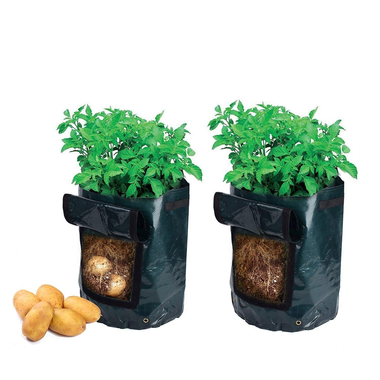 Borsa per Coltivare le Patate
