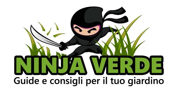 Ninja Verde