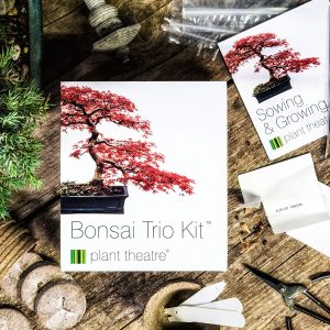 plant theatre kit bonsai