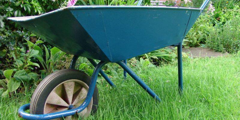 Carriola | Quale scegliere per il giardinaggio?